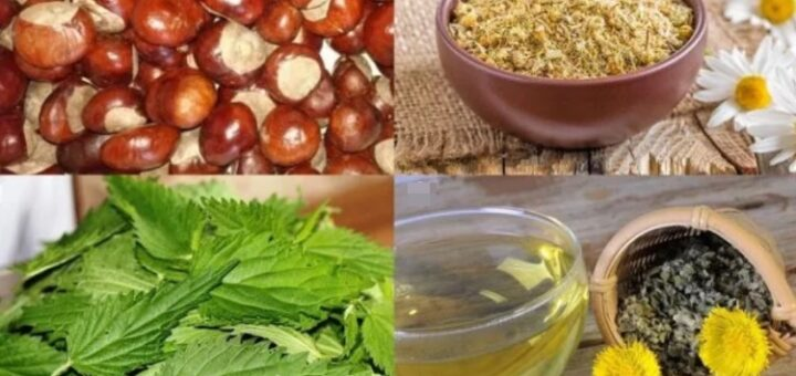 Природные средства при остеохондрозе
