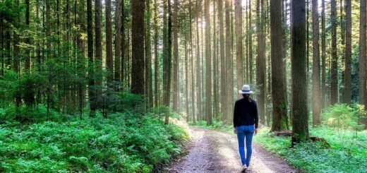 Ходьба при остеохондрозе