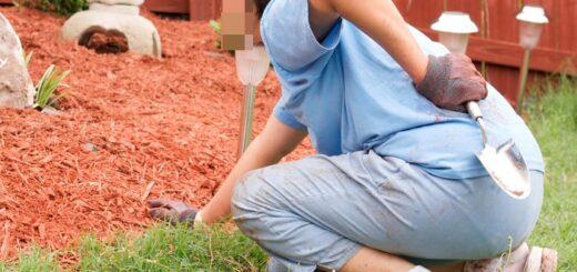 Радикулит поясничный можно легко заработать летом на огороде