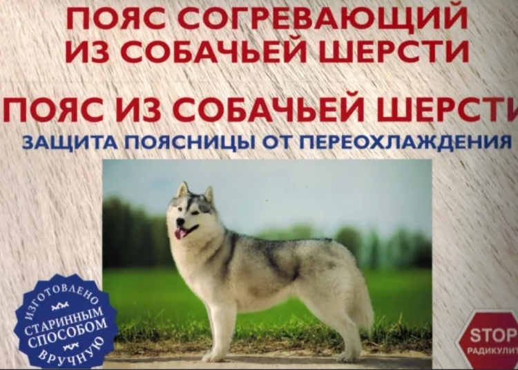 Собачья шерсть для защиты поясницы от холода
