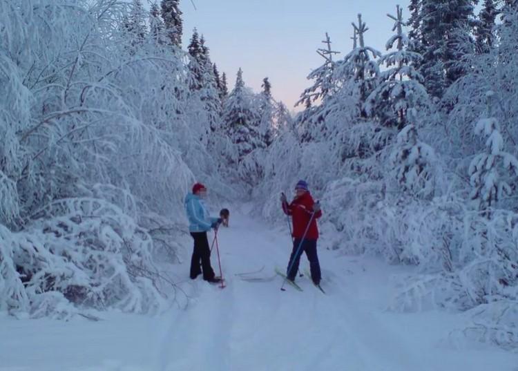 Рекомендуемый вид спорта, лыжные прогулки это мощное оздоровительное воздействие на кости скелета.