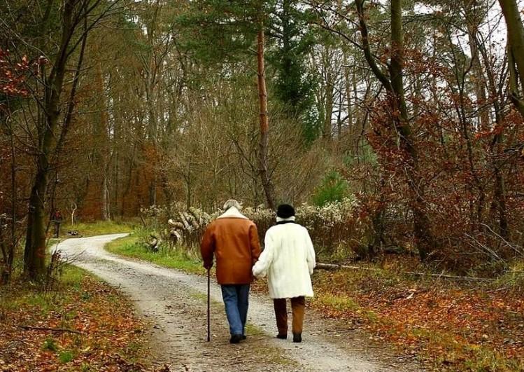 Регулярные прогулки, как форма оздоровительных занятий.