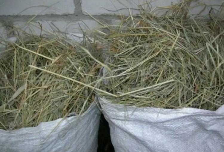 Труха сенная в мешочках