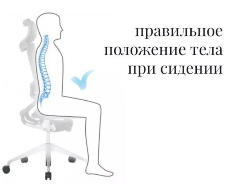 Боль в спине не будет мучать если правильно сидеть
