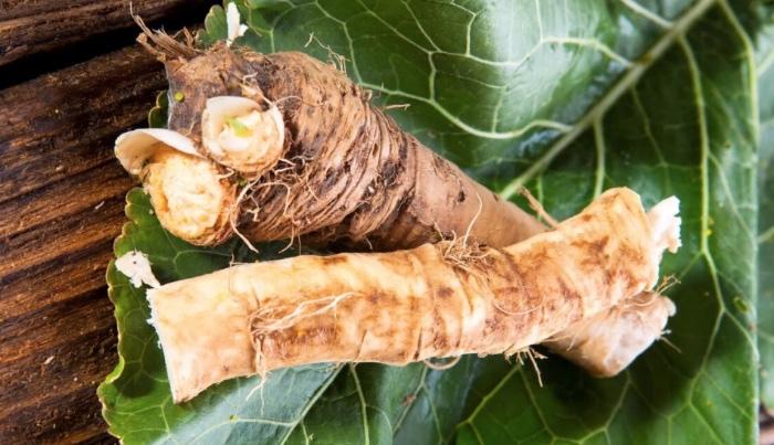 Корни и листья хрена при острых болях