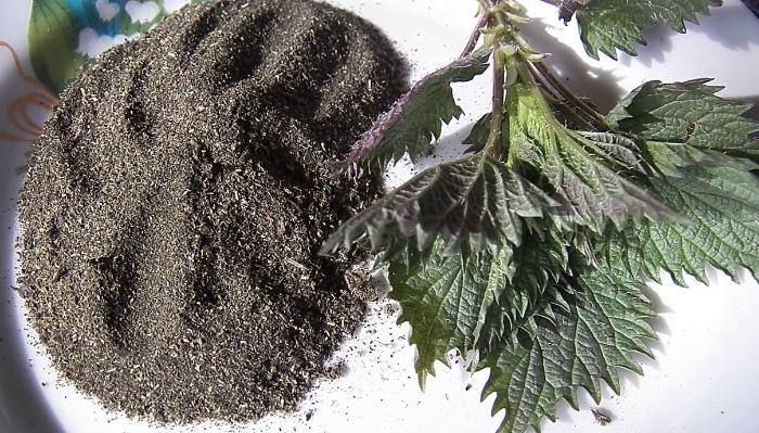 Порошок из крапивы для восстановления костной ткани